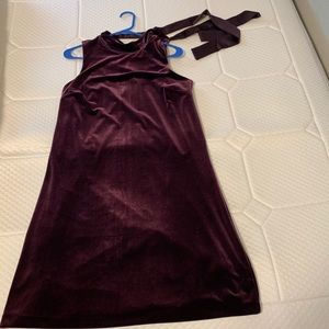 Ann Taylor Wine Velvet Dress